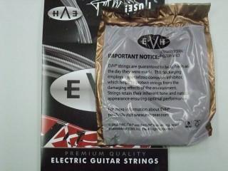 evh_strings04